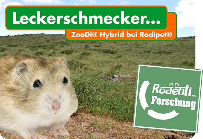 Hybridenfutter bei Rodipet