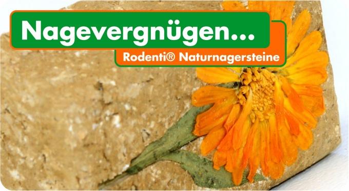 Rodenti® Naturnagerstein Ringelblume